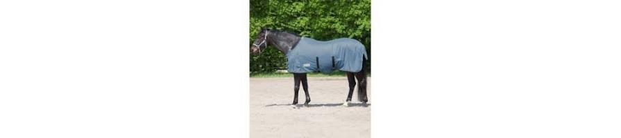 Chemises et textile cheval